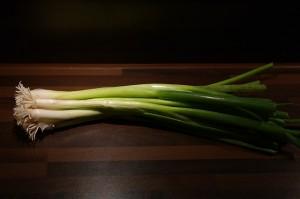 winter-onion-228039_640