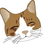 cat-159653_150